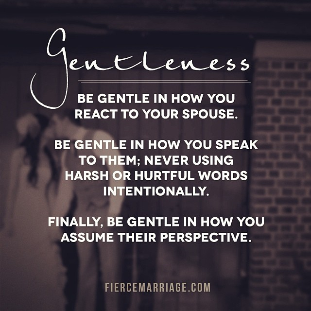 Be gentle in how you react to your spouse. Be gentle in how you speak to them; never using harsh or hurtful words inentionally. Finally, be gentle in how you assume their perspective. -Jeff Foster